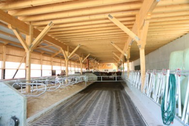 Holzbau-Landwirtschaft-Boxenlaufstall-Ormalingen-038